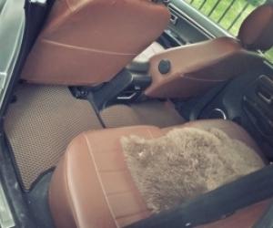 Автомобильные коврики GreatWall Hover М4 (2012 - ...)